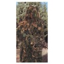 SYNTHETIC GHILLIE SUIT
