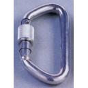 Silver Locking D Carabiner